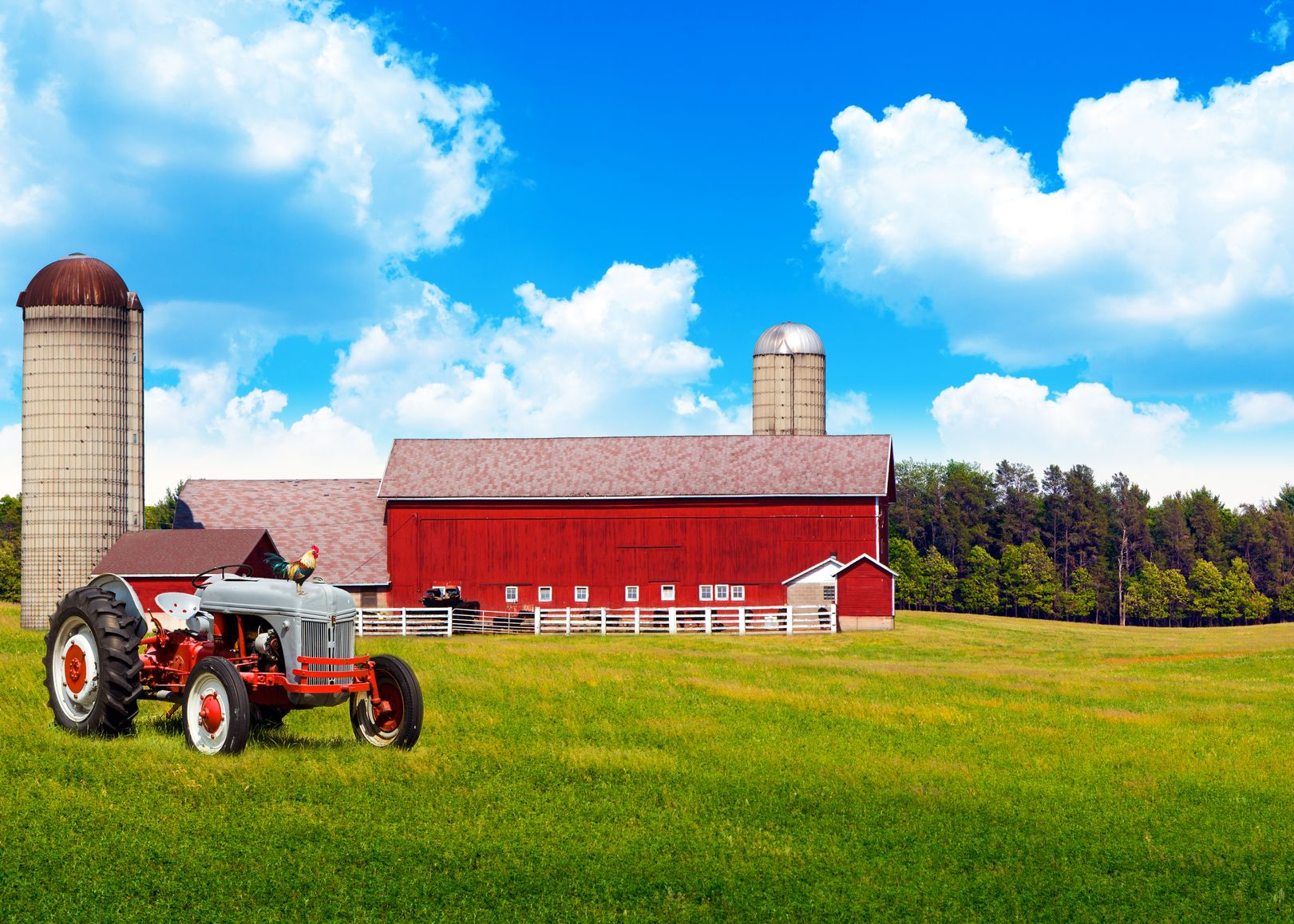 Port Jefferson, Long Island, NY. Farm & Ranch Insurance